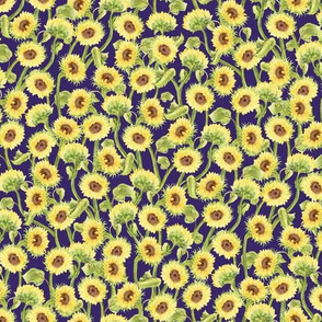 Small Summer Sunflowers on Navy