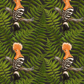 thickets of fern leaves and hoopoes