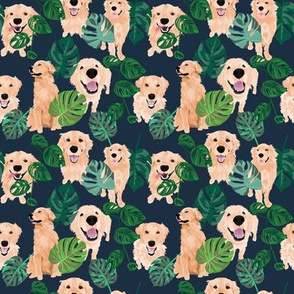 golden-retrievers-tropical
