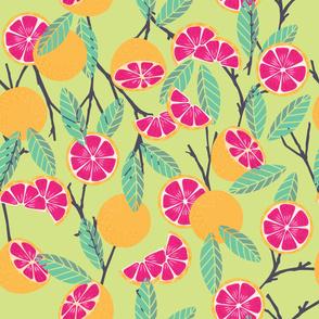Fruit Grapefruit Pattern 15