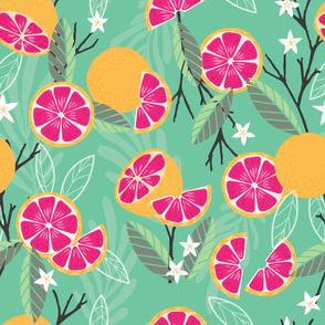Fruit Grapefruit Pattern 020