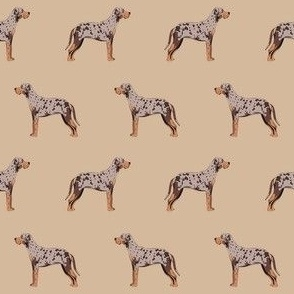 louisiana catahoula leopard dog fabric - tan