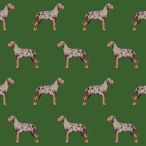 louisiana catahoula leopard dog fabric -green