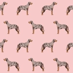 louisiana catahoula leopard dog fabric - pink