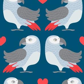 Parrot Love - UnBlink Studio by Jackie Tahara