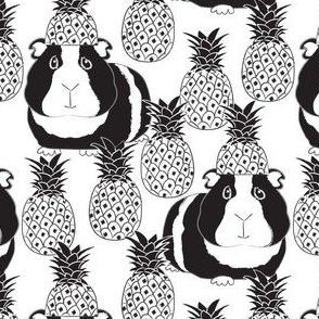 black and white guinea pigs and pineapples