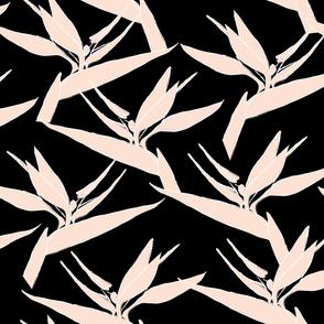 JUMBO - birds of paradise - black and pale peach