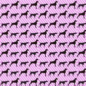 alt weim sillouettes candy stripes diGONAL