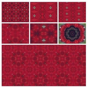 Red Collage to be edited
