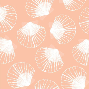 LARGE Shells - peach and white