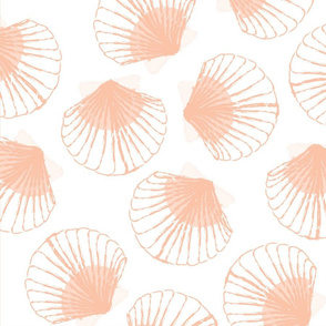 LARGE Shells - white and peach