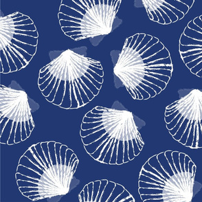 LARGE Shells - blue and white