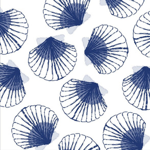 LARGE Shells - white and blue