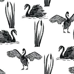 Scattered Black Swans - larger block print