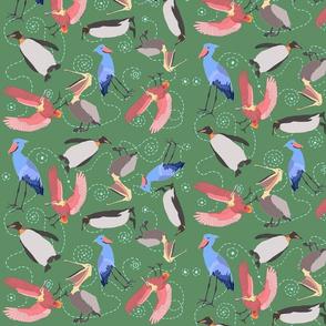 large birds v.2