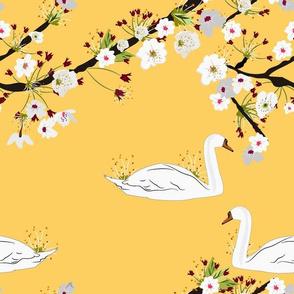Sakura Swan - Yellow