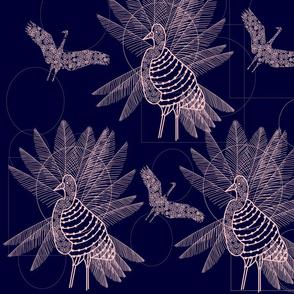 Large-birds
