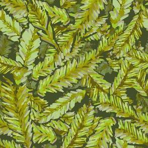 Redwood Leaves Spring Green