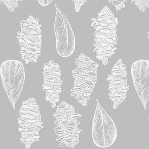 Banksia Grey tone