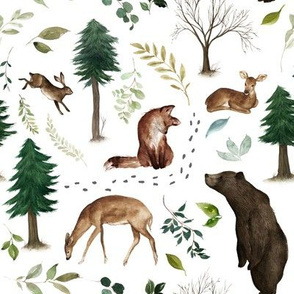 Woodland Animals in the Forest