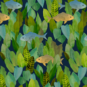 Forest of Fish