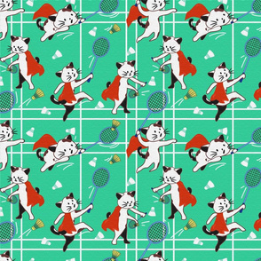 Supercat Badminton