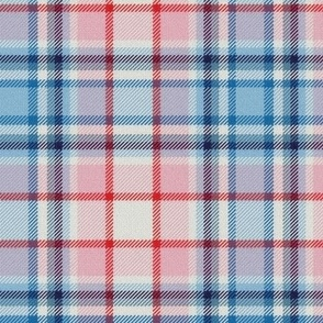 Baby Pink and Blue White Center Plaid
