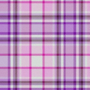 Violet Purple and Pink White Center Plaid
