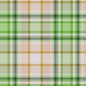 Lime Green and Beige White Center Plaid