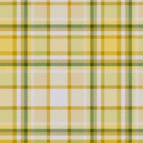 Yellow with a bit of Green White Center Plaid