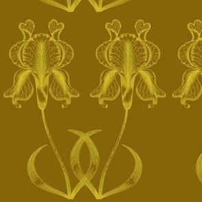 Gold Iris