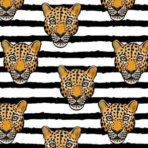 Leopards on stripes - LAD20