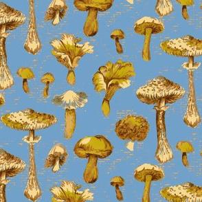 Mushroom Stripe- Blue