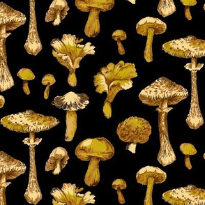 Mushroom Stripe- Black