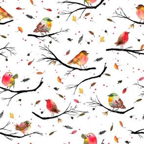 Bird branches Autumn Big