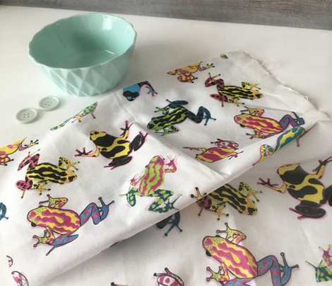 Colorful frogs on white