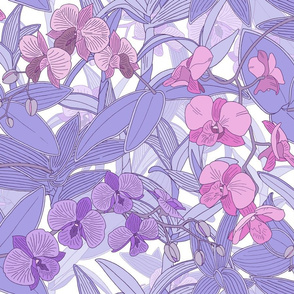 Purple and Pink Orchids M