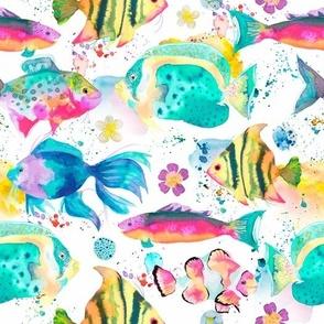 Tropical hawaiian fishes medium