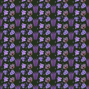 0409_purple_flowers