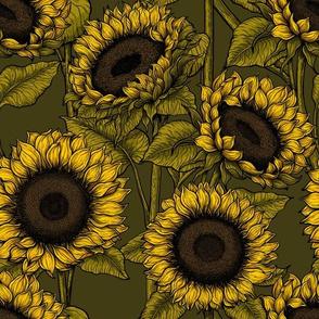 Sunflower field 4