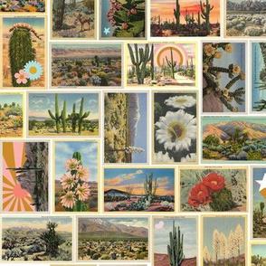 Painted Desert* || boho postcards vintage ephemera western wild west rainbow shooting star cactus lizard floral flowers nature flora mountains vacation summer