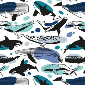 Small scale // Whales joyful song // white background pastel denim and classic blue teal aqua and white and black geometric sea animals