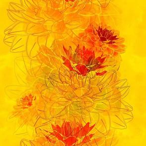 autumn dahlia flowers