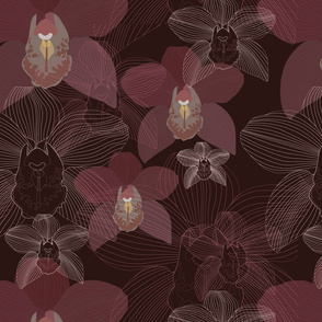 Chocolate Cymbidium orchid/ brown background/ large scale/ tropical orchids/cymbidium orchids/warm colors/ lines art work/