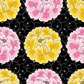 Peonies Pink and Yellow on Black Background