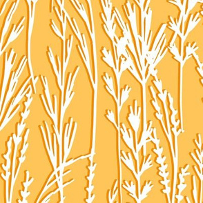 Large Abstract Wild Grass Wheat Field Yellow & White