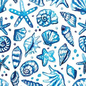 blue watercolor seashells