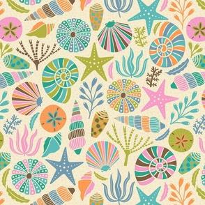 Seashells in Retro Colors