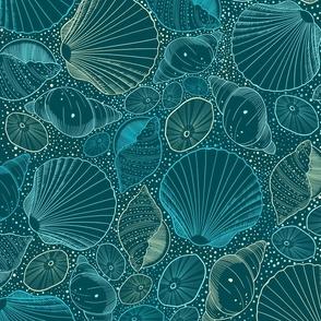 Sea shells turquoise blue yellow