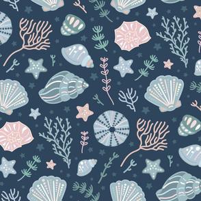seashells grey blue ocean